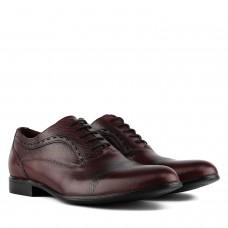 Туфлі чоловічі шкіряні бордові стильні TAPI на шнурівці