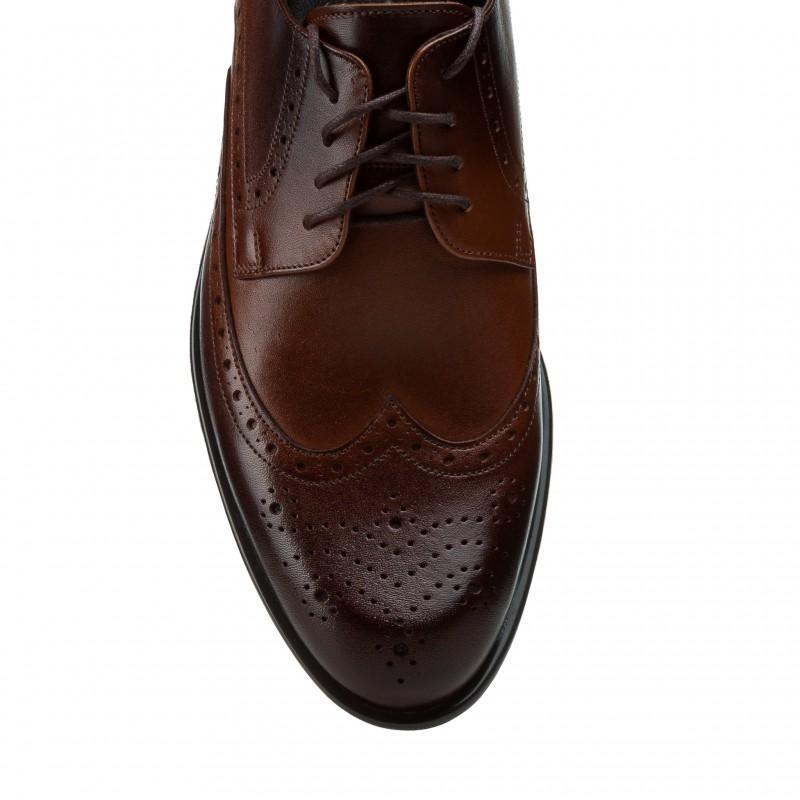 Туфлі чоловічі шкіряні коричневі з перфорацією Tapi